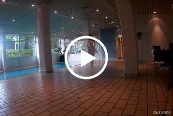 DonJohnXXX: Geiles girl bläst mir einen public am hotel pool