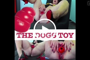 nipplequeen: THE DOGS TOY