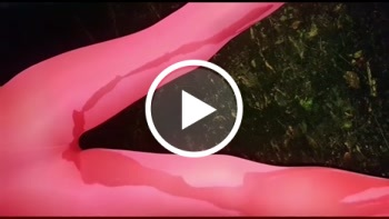 saltnpepper: Im Wald gepisst